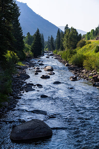 Eagle River Minturn Colorado Summer Eagle River Minturn Colorado Summer - Scenic view looking toward the south in Minturn, Colorado USA.  Eagle River flowing down from high mountains above. minturn colorado stock pictures, royalty-free photos & images