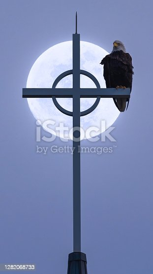 istock eagle sitting on a cross with the full moon behind it 1282068733
