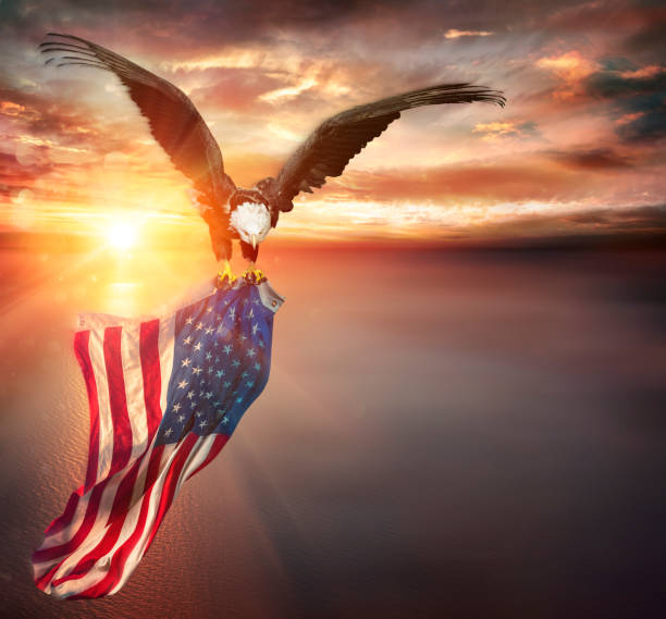 Eagle With American Flag Flies In Freedom At Sunset - Vintage Toned stock photo