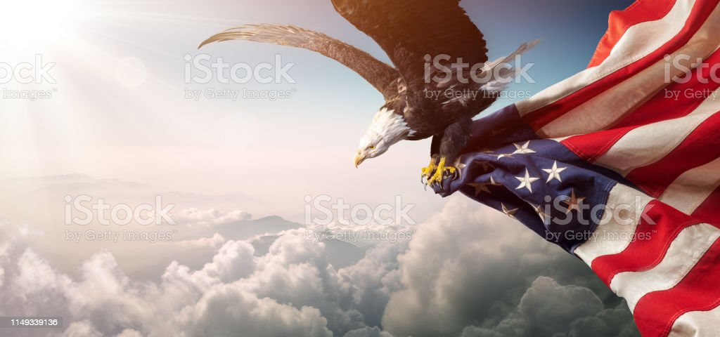 Eagle With American Flag Flies In Freedom Eagle With American Flag Flies In The Sunny Sky American Culture Stock Photo