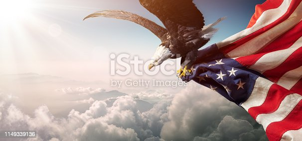 Eagle With American Flag Flies In The Sunny Sky