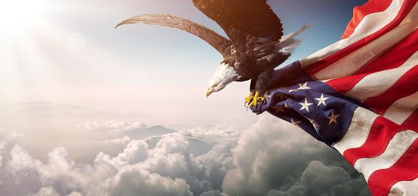 Eagle With American Flag Flies In Freedom Stock Photo - Download Image Now