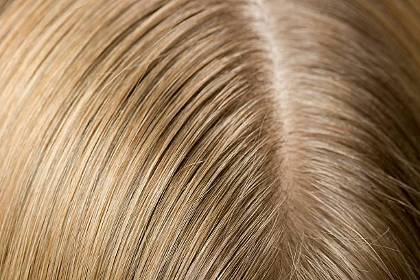 Ear and hair of a woman  human scalp stock pictures, royalty-free photos & images
