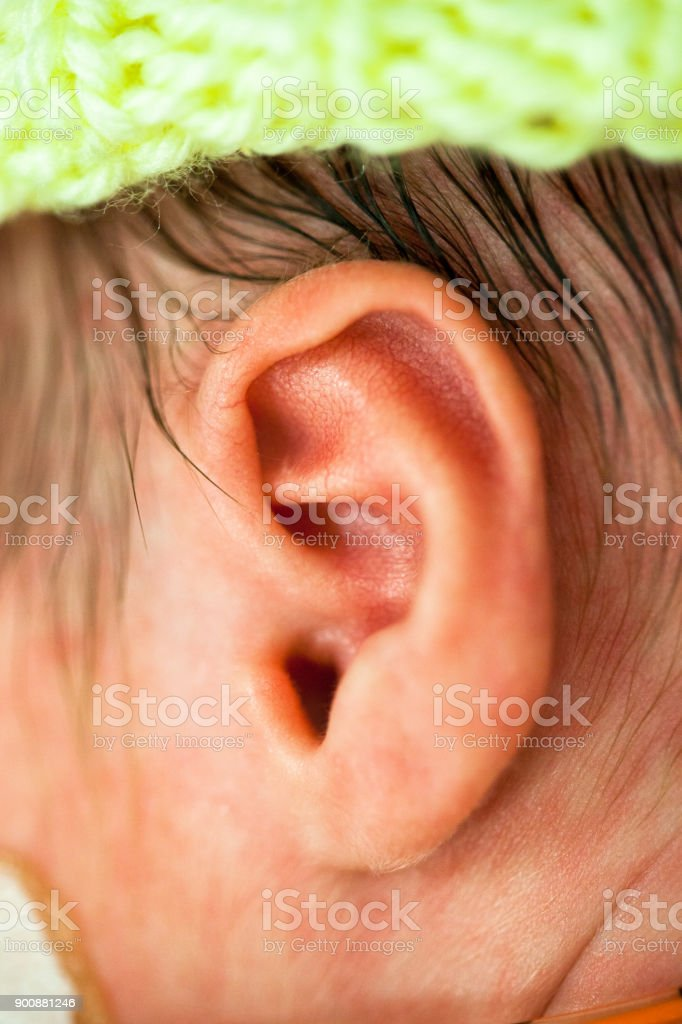 Baby\'s ear 33 weeks and 5 days old in the hospital.