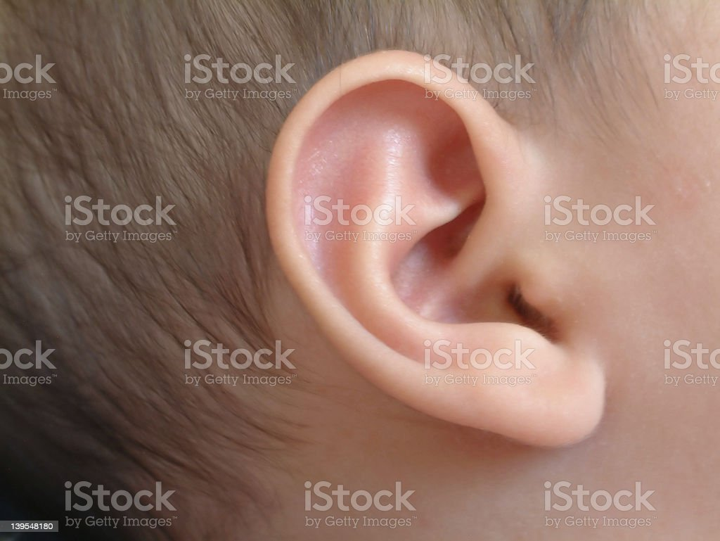 Ear of an infant stock photo