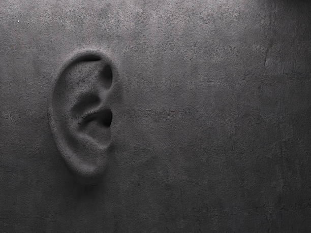 ear on wall concept - ear stock photos and pictures