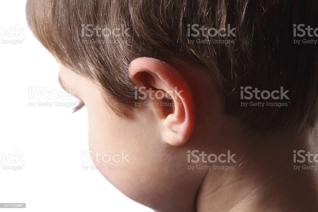 Ear royalty-free stock photo