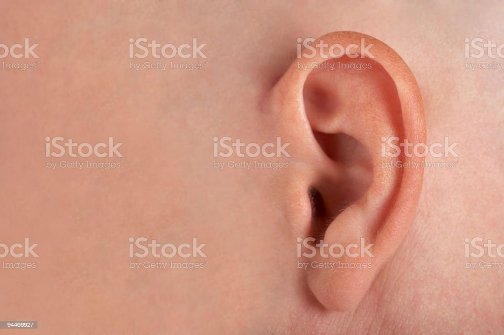 ear with place for text royalty-free stock photo