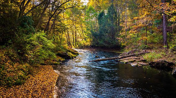 Early autumn color along the Gunpowder River in Gunpowder Falls stock photo