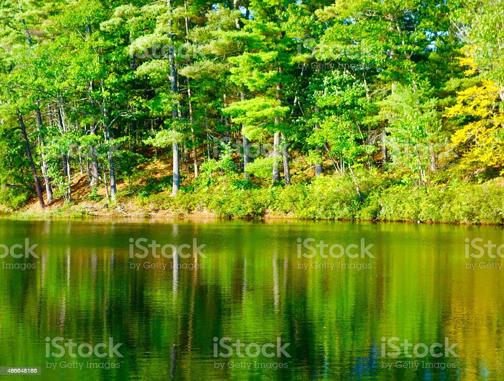 Early autumn in Maine stock photo
