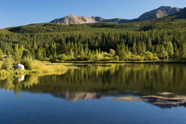 Early Autumn in White River National Forest, Colorado. stock photo