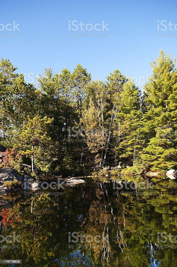 Early Autumn Reflection royalty-free stock photo