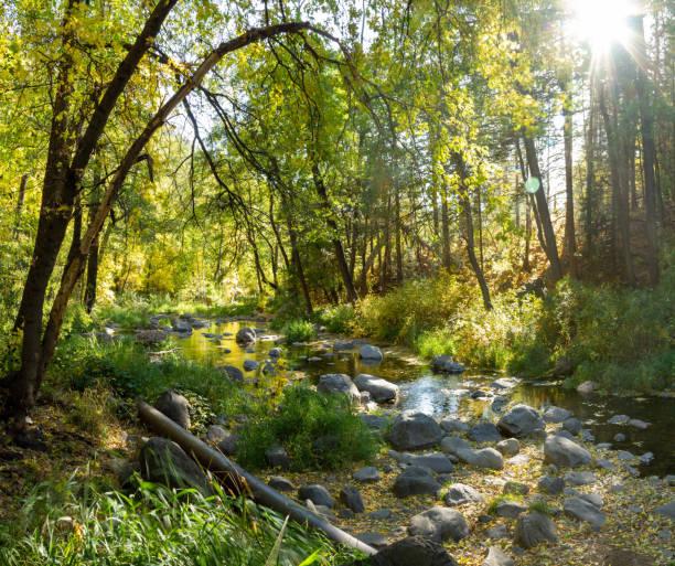 Early fall colors over Oak Creek outside Sedona, Arizona stock photo