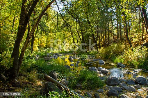 Early fall colors over Oak Creek outside Sedona, Arizona with water flowing over and around rocks.