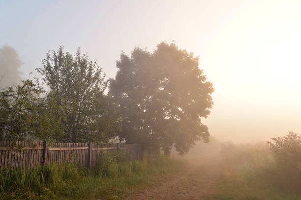 early misty morning in the village - palisade boundary stock photos and pictures