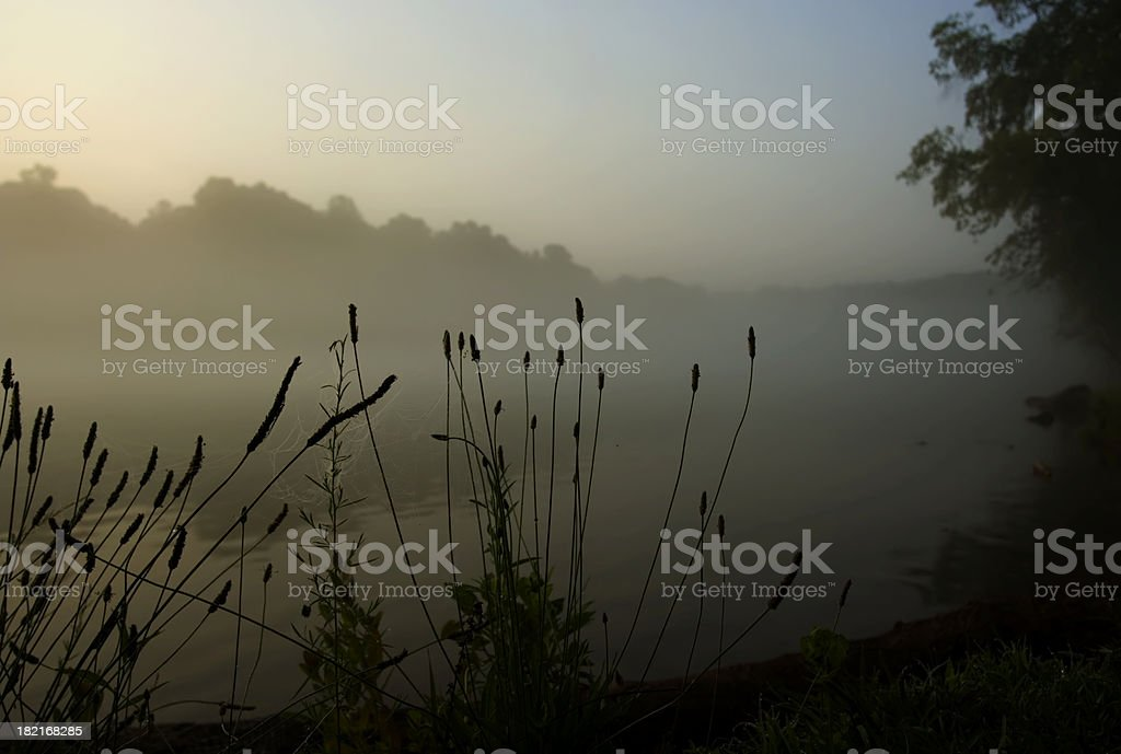 Early morning Chattachoochee river royalty-free stock photo