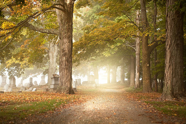 early morning fall cemetery - cemetery stock photos and pictures