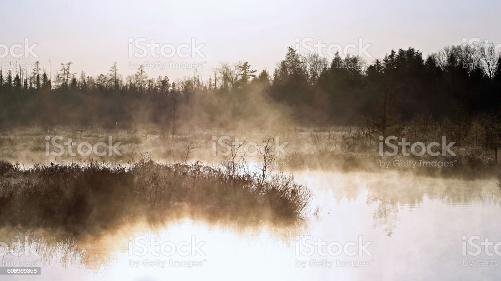 Early morning fog and mist covering Marshlands foto stock royalty-free