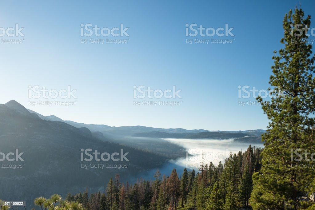 Early morning fog in Yosemite Valley = dew stock photo