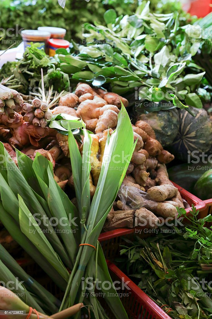 Early Morning green vegetable stock photo