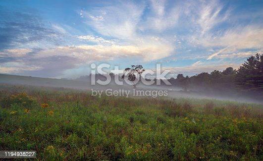 Upstate New York in Sullivan county in summer with fog on the meadow
