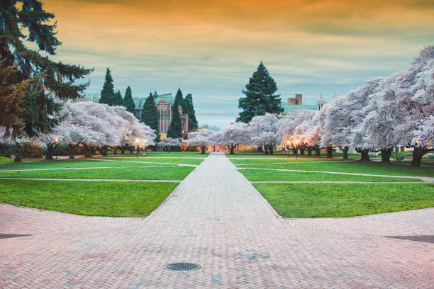 Early Morning in the Spring Campus stock photo
