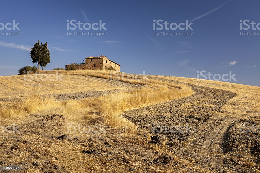 Early morning in tuscan countryside, Tuscany, Italy royalty-free stock photo