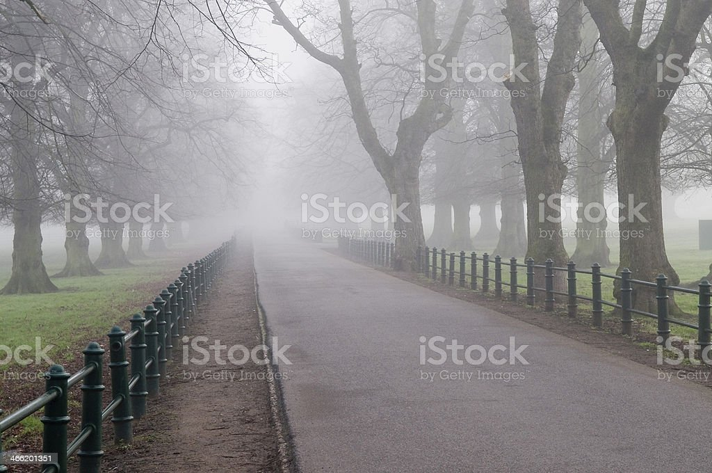 Early morning mist stock photo