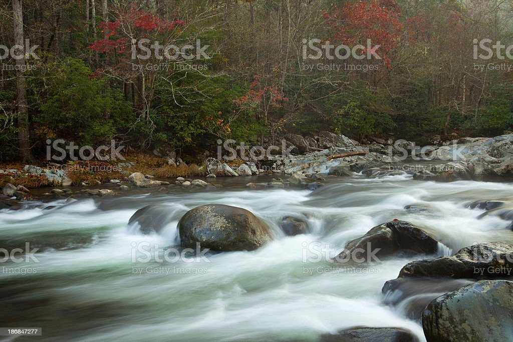 Early Morning on the Little Pigeon River royalty-free stock photo