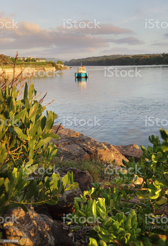 Early morning on the Minamurra River stock photo