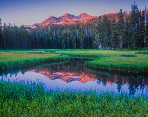 Early morning on Wrights Lake, near Lake Tahoe, California near Lake Tahoe, serene destination, early morning on the lake, refreshing, fresh start, calm water national forest stock pictures, royalty-free photos & images