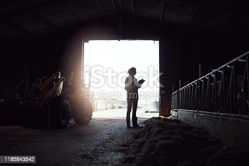 Shot of a young woman working in the barn at a dairy farm