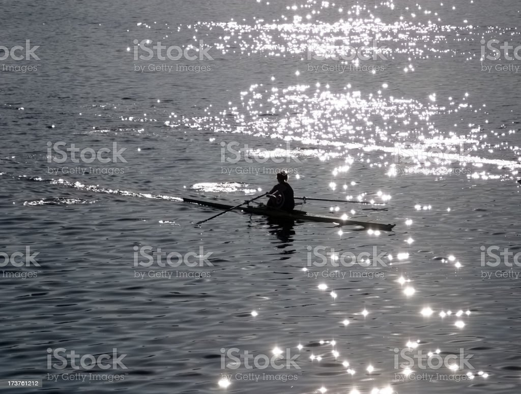 Early Morning Rowing royalty-free stock photo