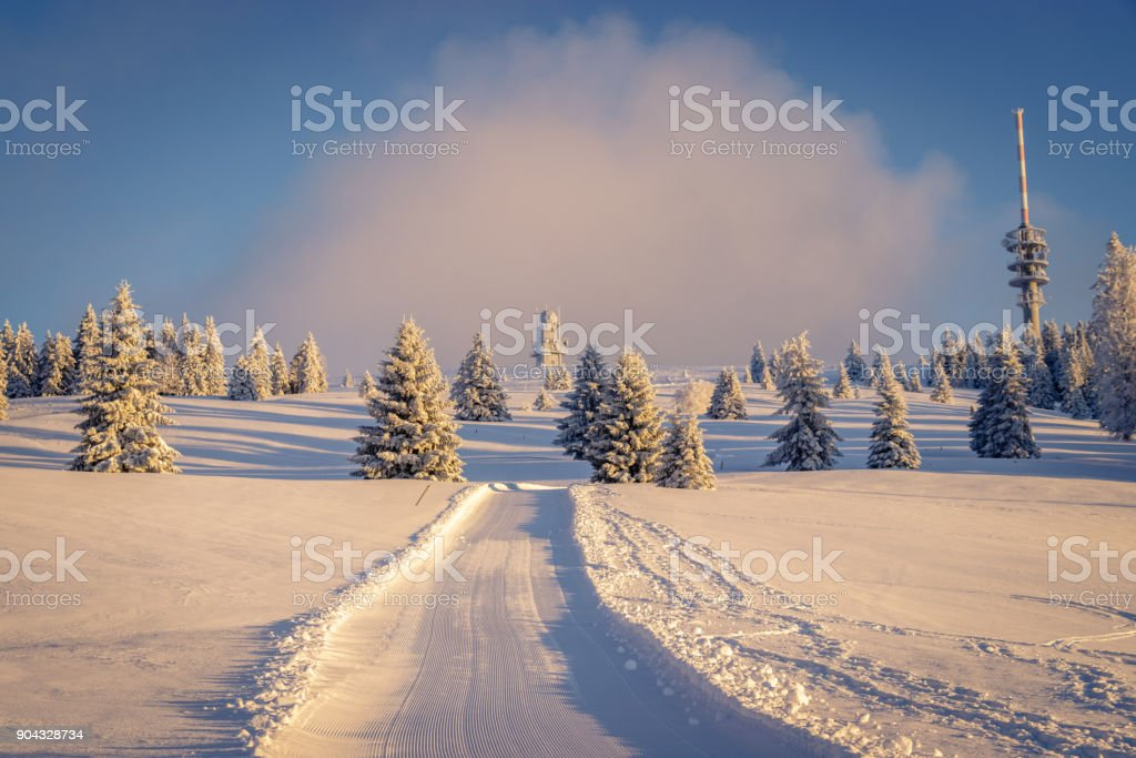 Early morning snow covered black forest warmed up by the sun rays. - Royalty-free Adventure Stock Photo