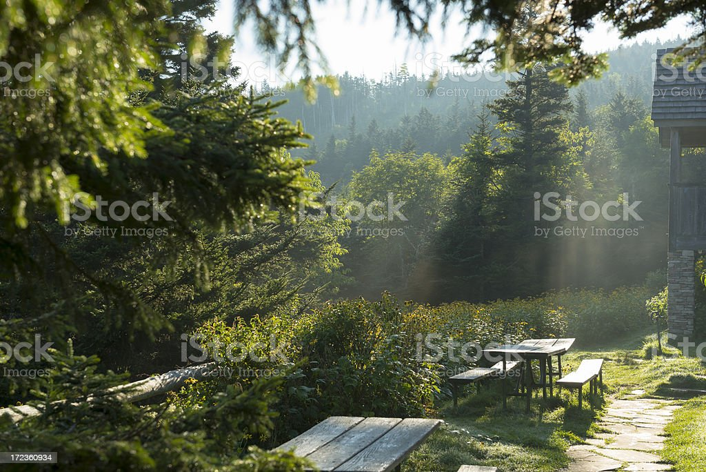 Sunrise at Mt. LeConte in Smoky Mountains stock photo