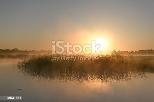 istock Early morning sunrise during a beautiful springtime day over the Zwartendijk near Kampen 1248901671