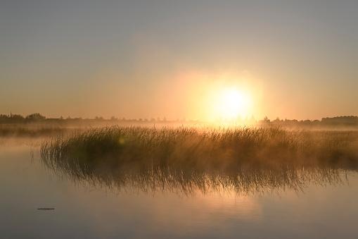 Early morning sunrise during a beautiful springtime day over the Zwartendijk, the old Zuiderzee levee in the IJsseldelta near Kampen in Overijssel The Netherlands.