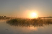 Early morning sunrise during a beautiful springtime day over the Zwartendijk, the old Zuiderzee levee in the IJsseldelta near Kampen in Overijssel The Netherlands.