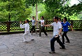Singapore - May 12, 2013: A group of Singaporeans practice the art of Tai Chi in a shaded spot at the Singapore Botanical Gardens. Tai Chi is a popular Chinese martial art technique used both for health and self-defense purposes. The Singapore Botanical gardens, where the group is practicing, is a green zone in largely urban, central Singapore city.