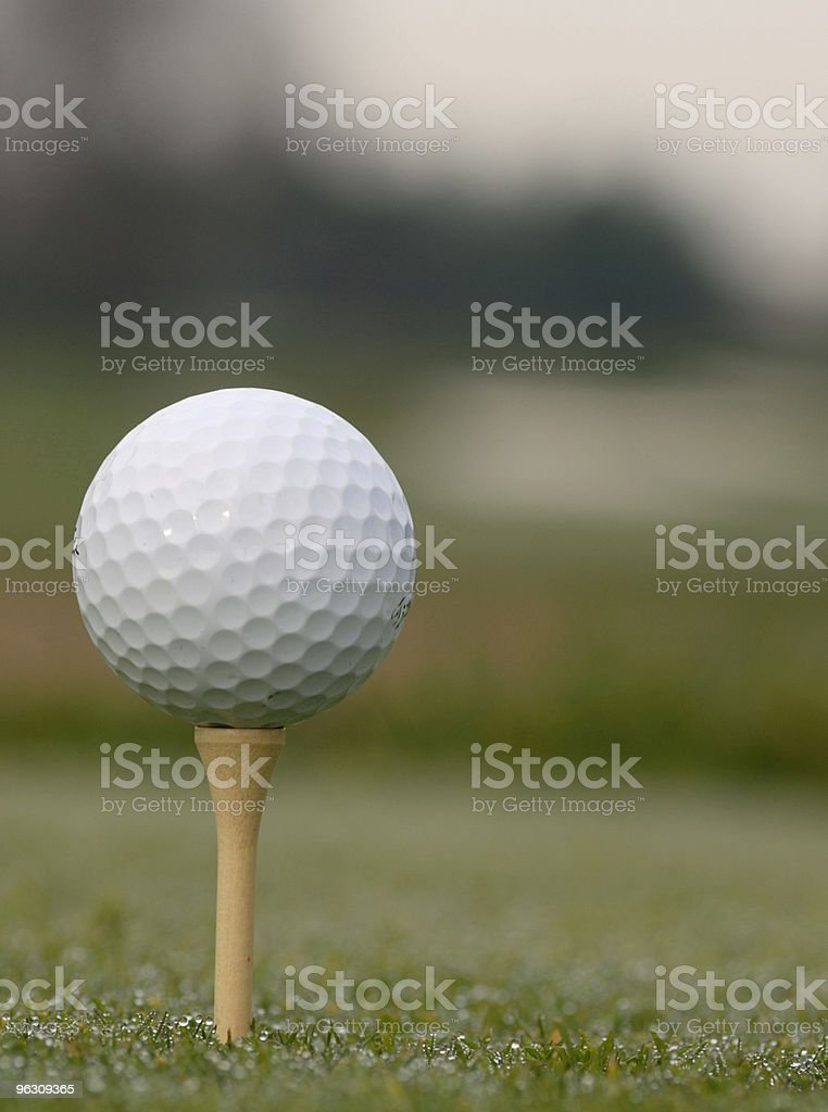 Early Morning Tee Time royalty-free stock photo