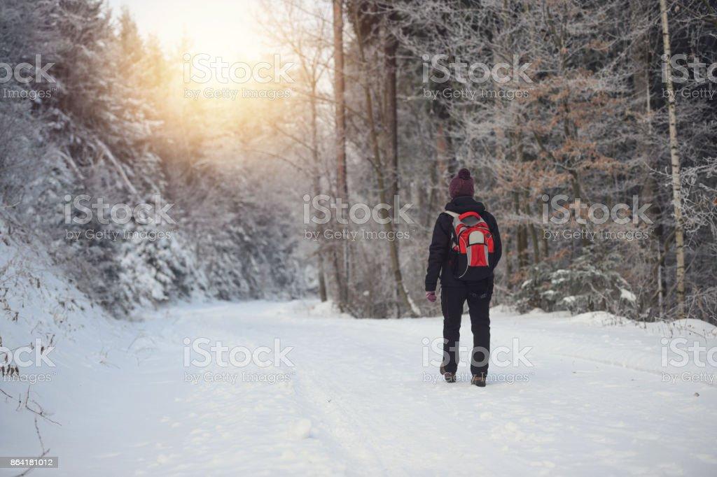 Early morning walk royalty-free stock photo