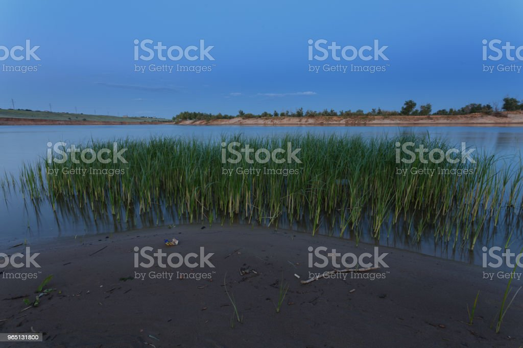 Early morning. Wet sand on the river bank, green grass growing in the water royalty-free stock photo