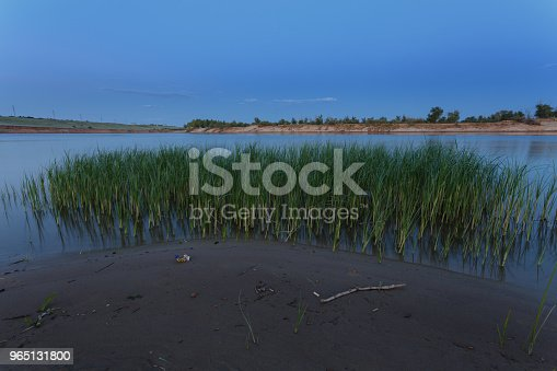 Early Morning Wet Sand On The River Bank Green Grass Growing In The Water Stock Photo & More Pictures of Bank