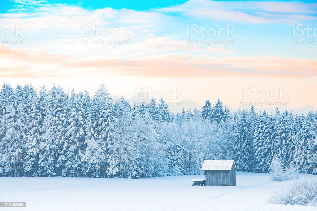 Early morning winter rural landscape with snow-covered forest stock photo