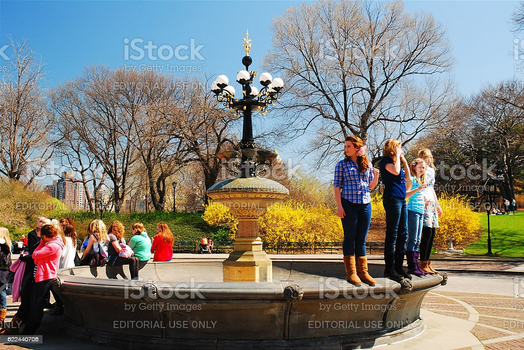 Early Spring in Central Park stock photo