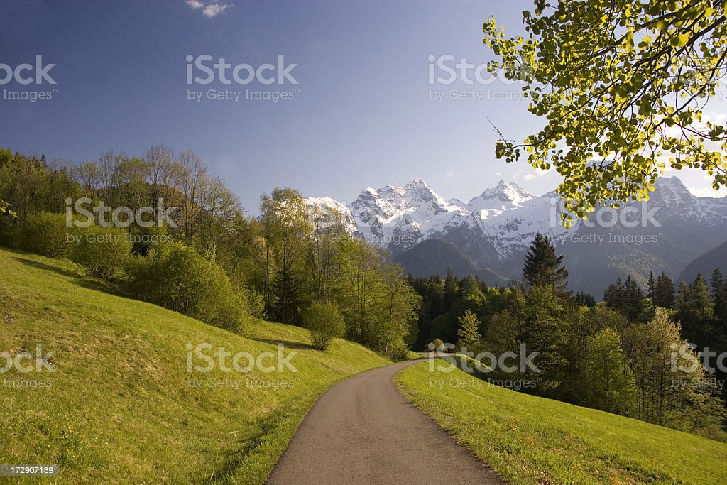early summer royalty-free stock photo