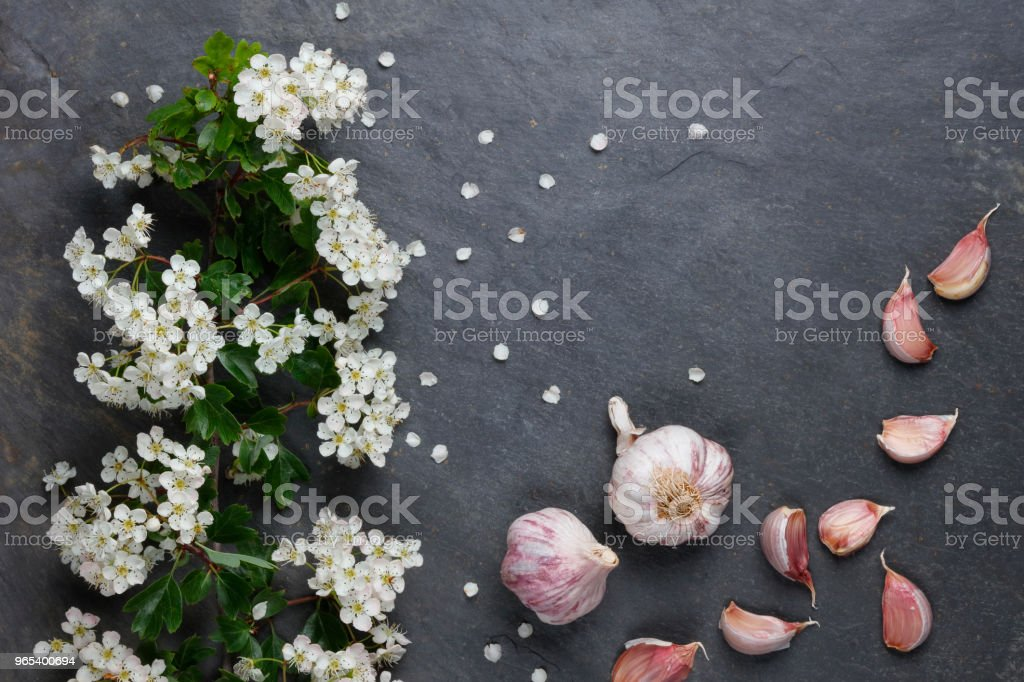 Early summer white  flower blossoms with pink garlic royalty-free stock photo