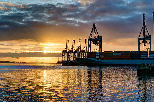 Early sunrise at the docks stock photo