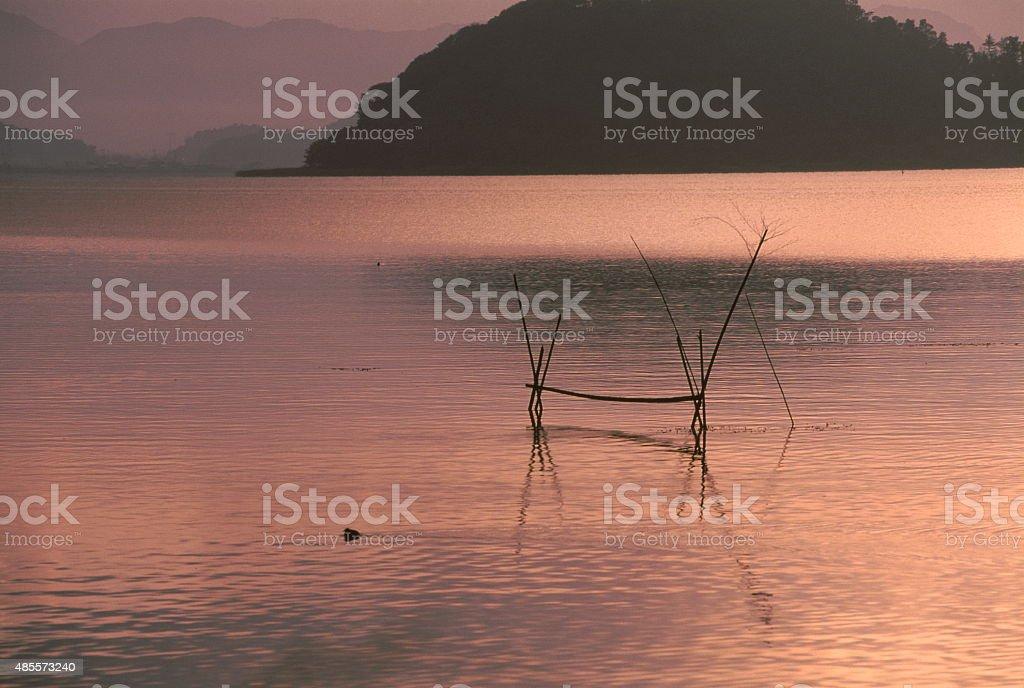 朝の湖 ロイヤリティフリーストックフォト