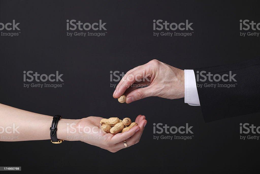 Earning Peanuts stock photo